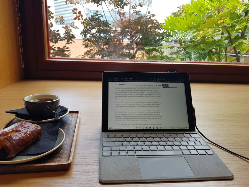 A year with the Surface Go
